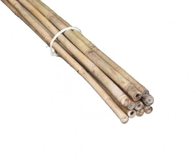 1214mm 12m Bamboo Garden Poles Pack of 10 poles Products