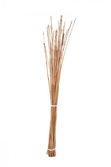 Small Buff Willow Sticks Products Somerset Willow Growers